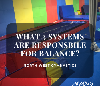 NWG-3 Balance Systems-post image
