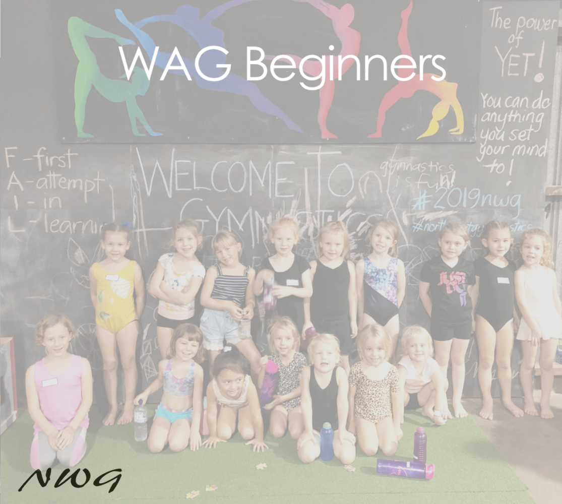 NWG North West Gymnastics Mount Isa WAG Beginners