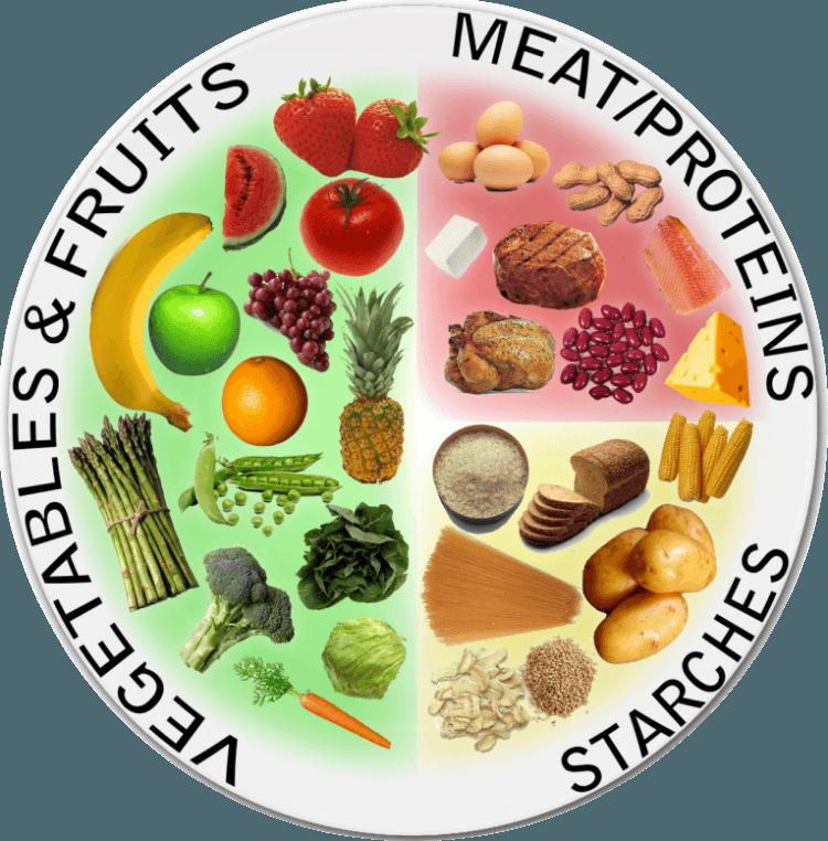 NWG North West Gymnastics Mount Isa the Plate Method Gymnast Diet Nutrition #nwgmountisa #northwestgymnastics #mountisa #mountisagymnaitcs