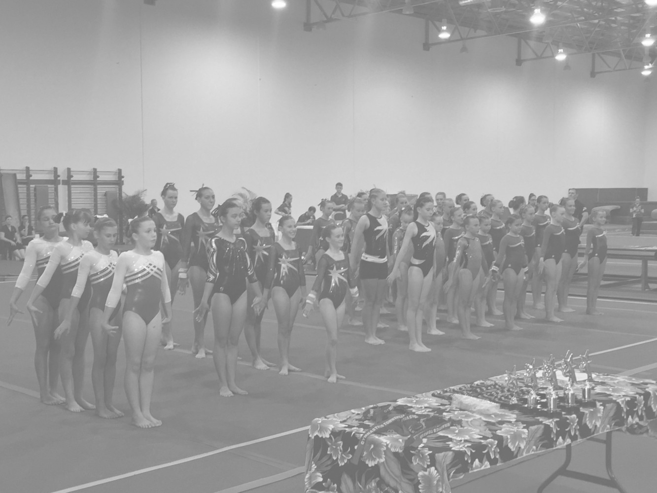 NWG North West Gymnastics Mount Isa Townsville Competition 2016 Background mountisagymnastics nwgmountisa